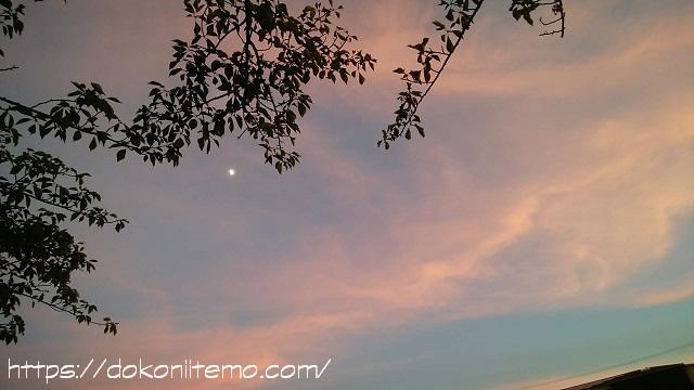 7月22日夕方の空に月