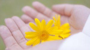 手汗がひどいのは病気なの?何科を受診する?治療法は?